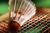 badminton small